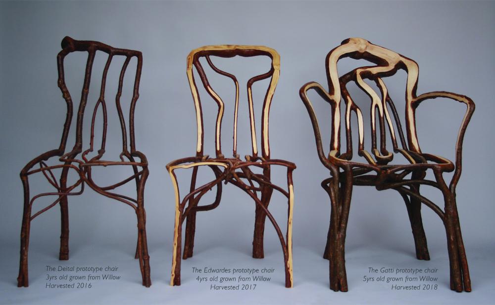 Des chaises végatales