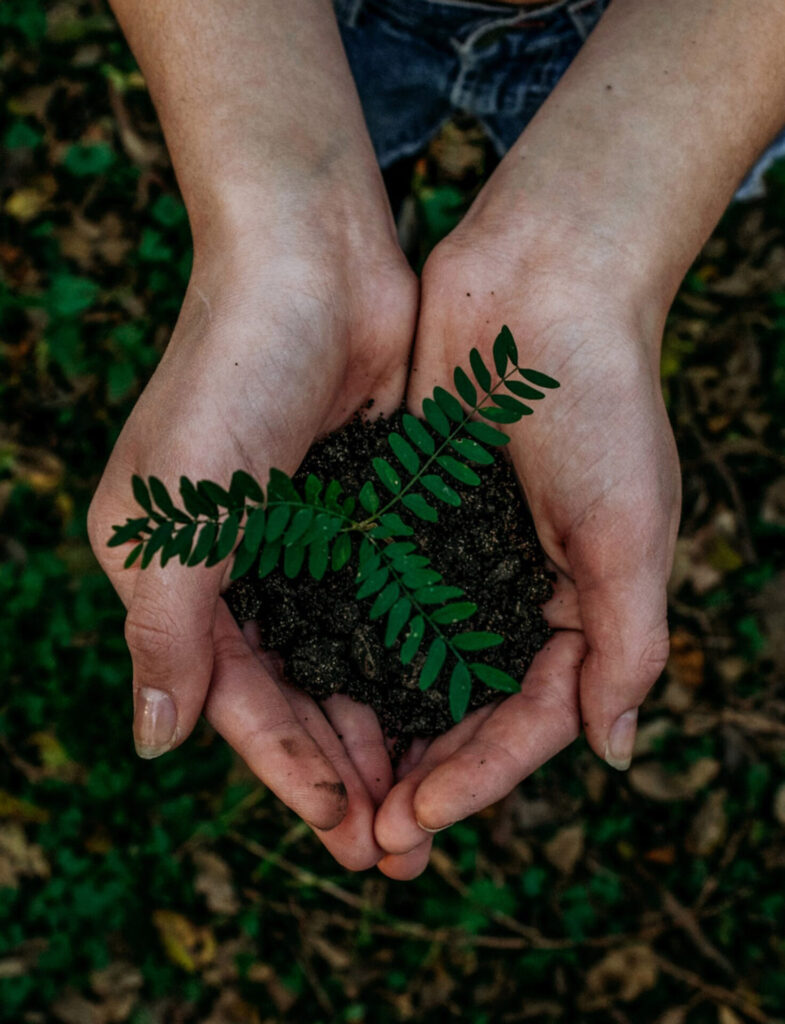page rse main avec plante